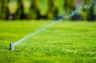 garden-lawn-sprinkler-P9YXUNA.jpg
