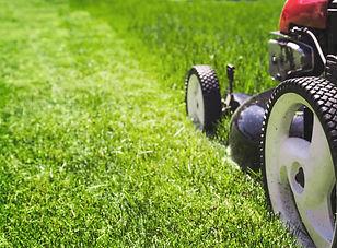 lawn-mower-PQYCQ4J.jpg