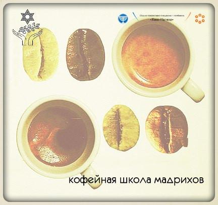 Кофейная школа мадрихов
