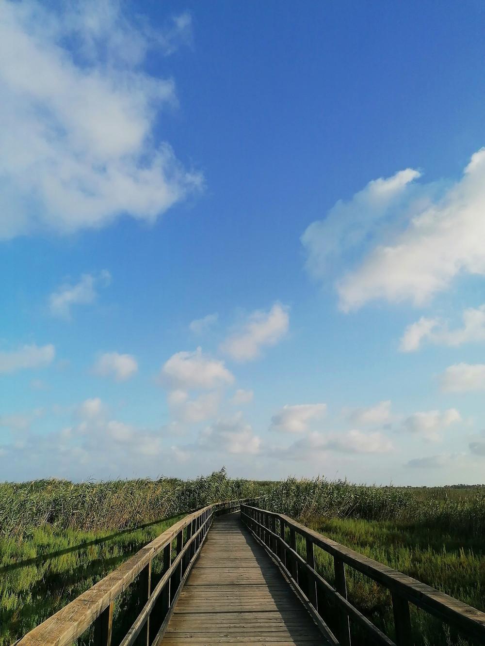 Pont avec Ciel Bleu