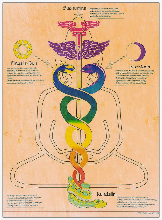 Prana | If it flows freely, you will be healthy
