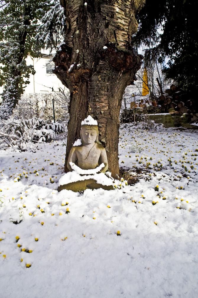 A Blissful, Stress-Free Winter : Seasonal Health with Ayurveda.
