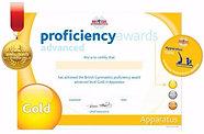 Advanced Proficiency