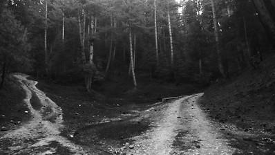 Road less traveled.