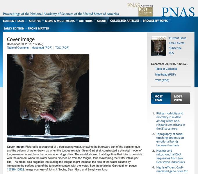 Cover of PNAS