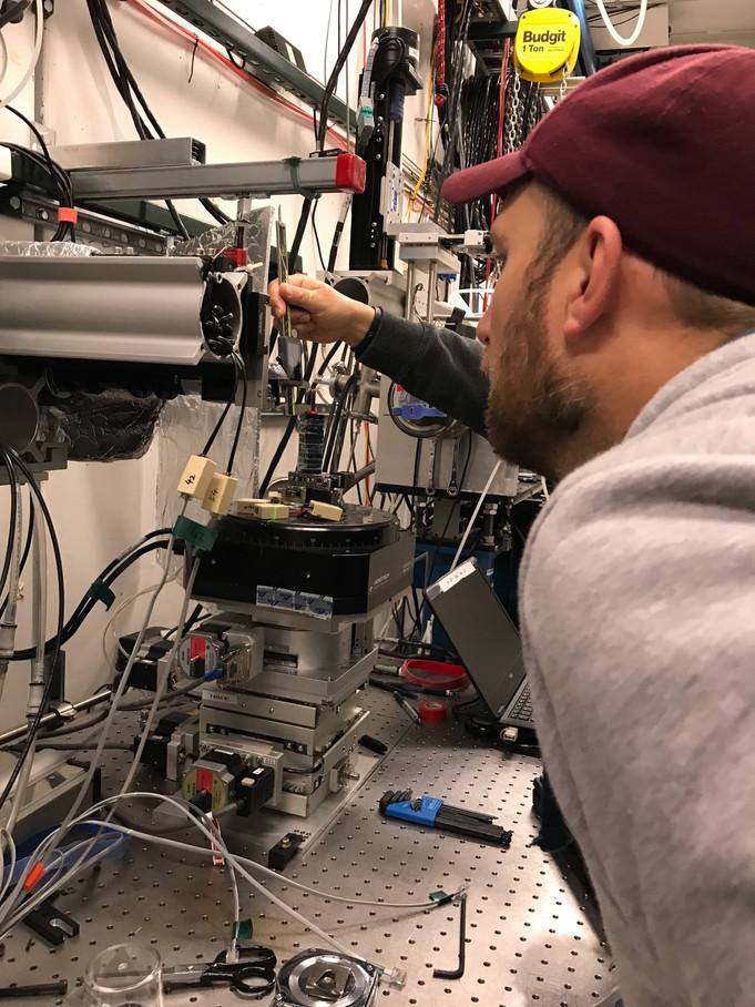 Synchrotron imaging of tiny chameleons