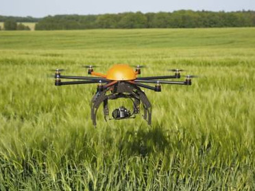 Agriculture Consulting & Drones