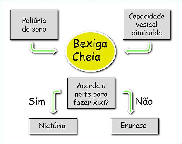 Dr Domingos Bica explica alguns aspectos da causa da enurese noturna na criança