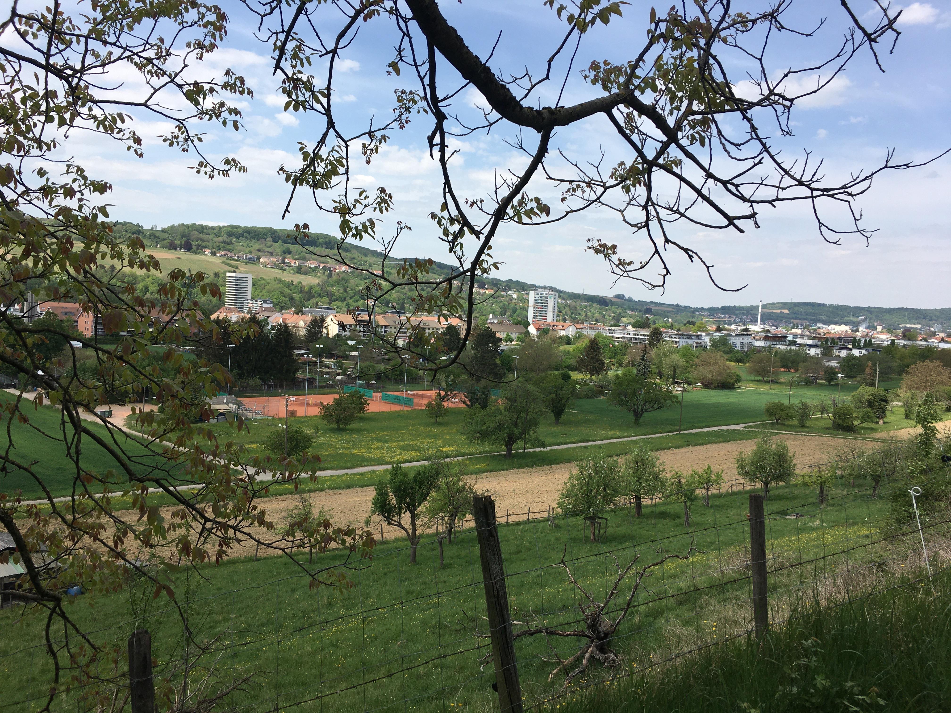 Aussicht Richtung Burg Rütteln