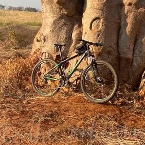 Zambia4 | Janine W. | P.O.A.