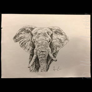 """Africa's Giant"" | Rebecca E. | $45"