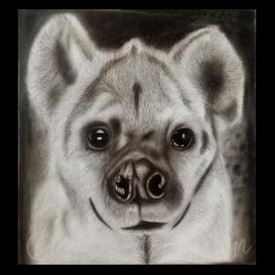 """Hyena"" | Jackson C. | $78"