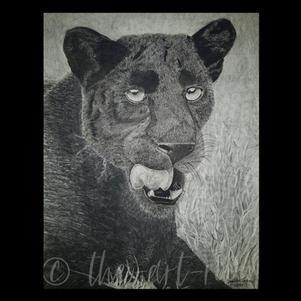 """Black Leopard"" | Danielle J. | $180"