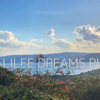 The Sea of Galilee- a view from Mt. of B