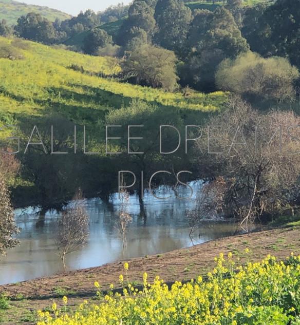 The Jordan River1: The Jordan river in spring time