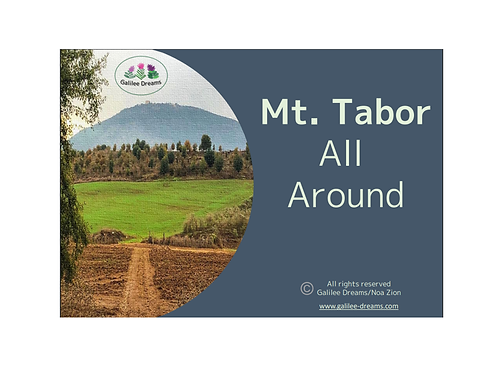 Mt. Tabor all around deluxe set of 12 magnets