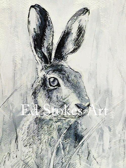 Hare A4 print