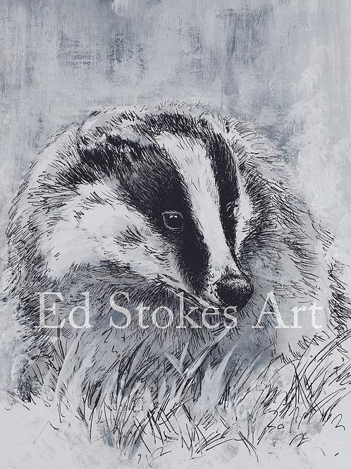 Badger A4 print
