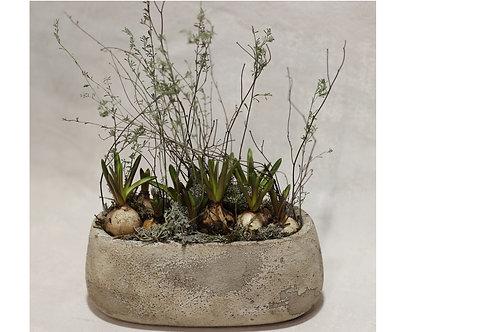 Muscari Trough Planter