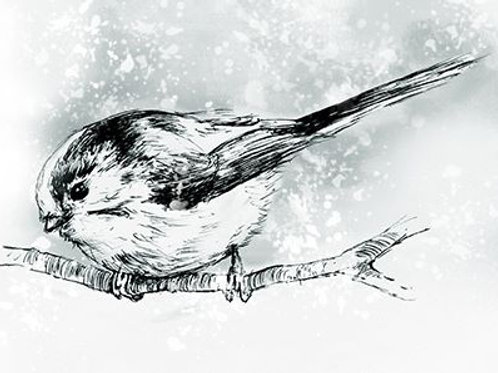 Snowy Long Tailed Tit Card