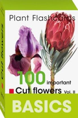 BASICS Cut Flowers Vol 2 Flashcards