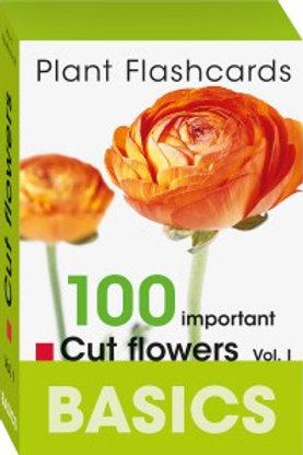 BASICS Cut Flowers Vol 1 Flashcards