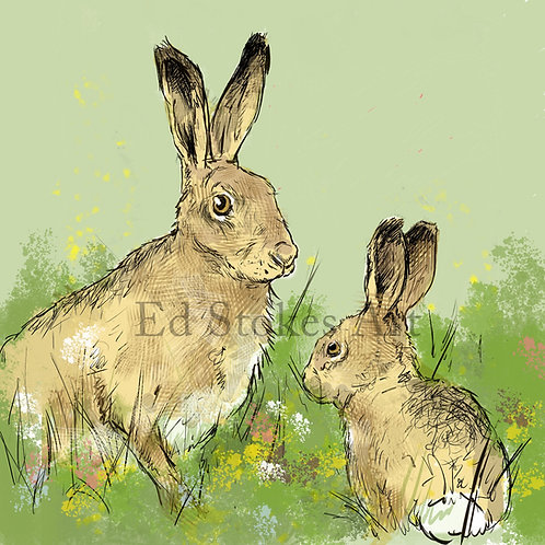 Hare and Leveret Card