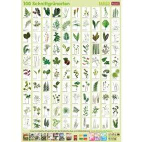 Cut Foliage Poster