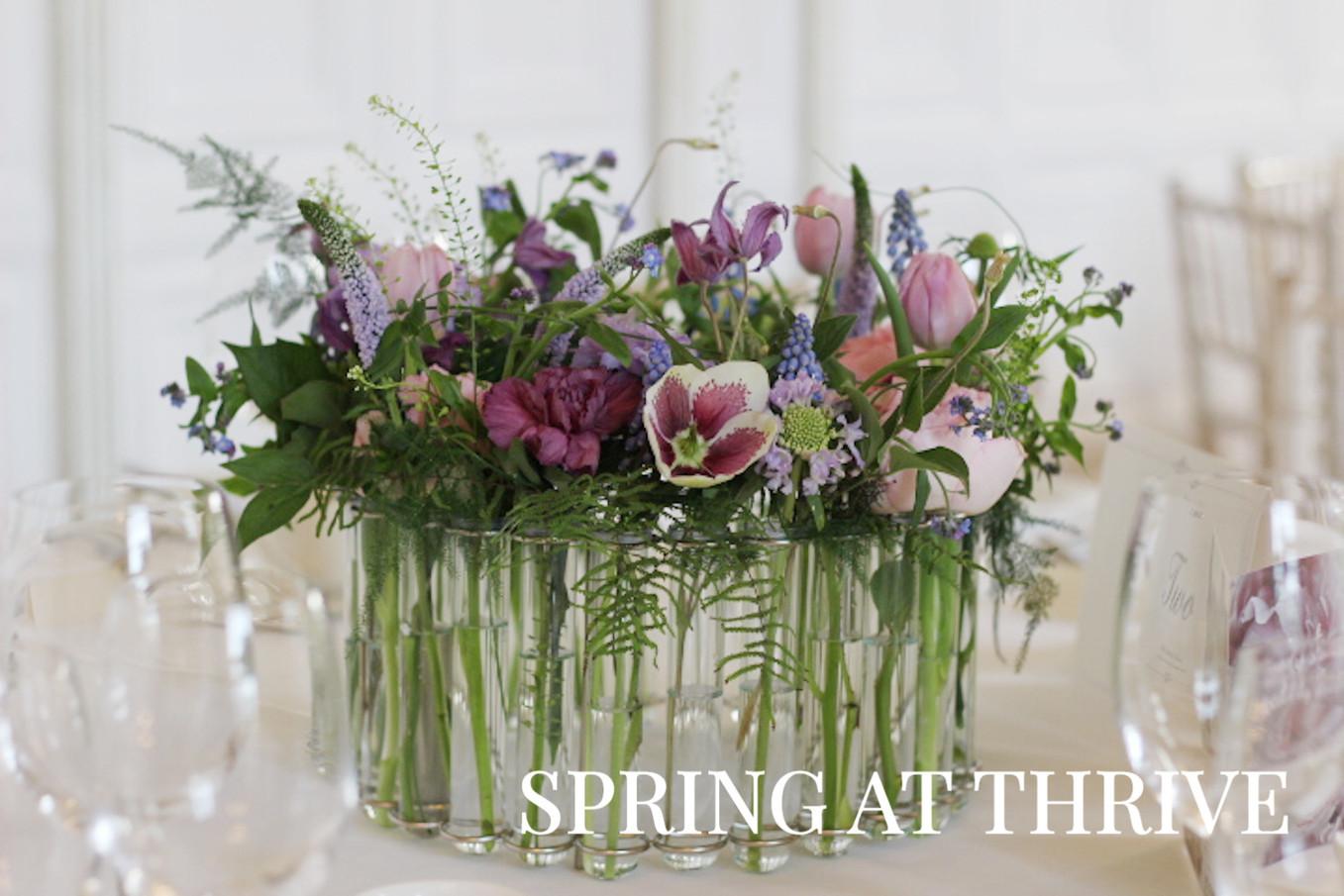 Spring at Thrive