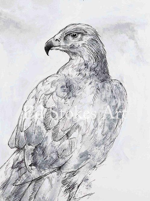 Gregor the Golden Eagle Card