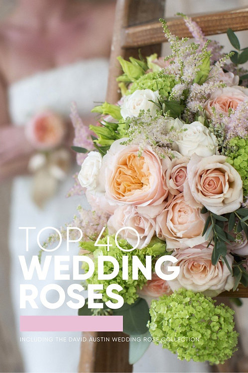 Top 40 Wedding Roses