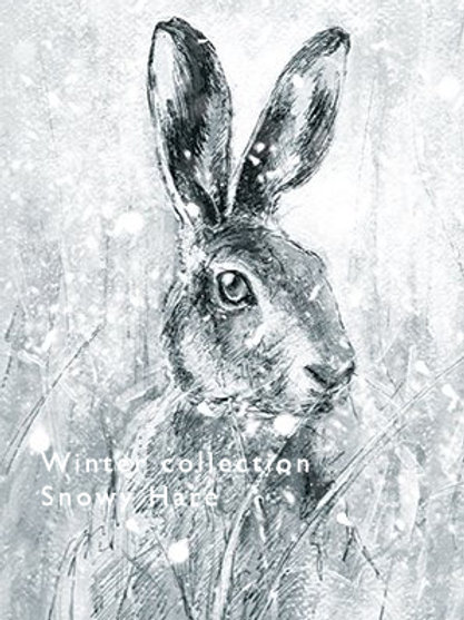 Snowy Mr Hare Card