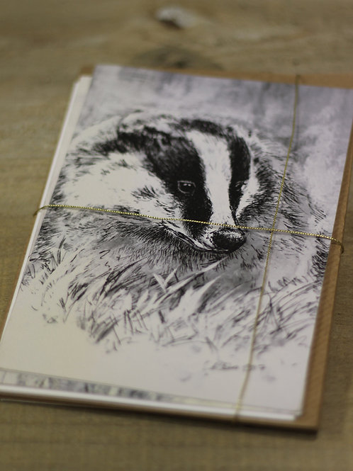 The Wildlife Card Collection