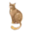 Akvarell Cat 3