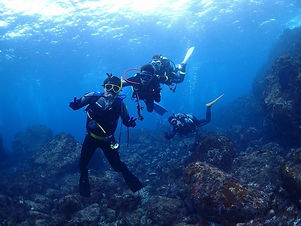 diving school_ゲイ専用ダイビングRODS