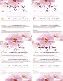 Mary Kay Beauty Experience_Platinum, Gol