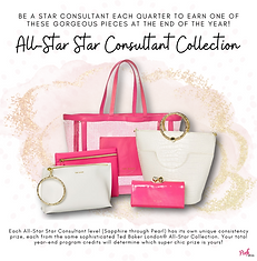 all-star star consultant• (1).png