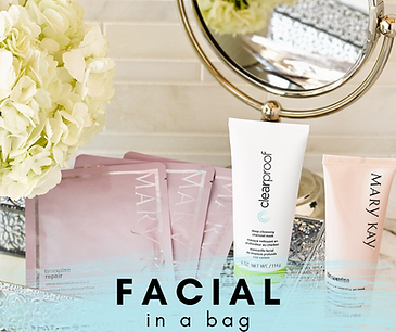 FACIAL in a bag2.png