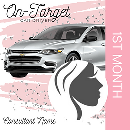 On-Target Car Driver.png