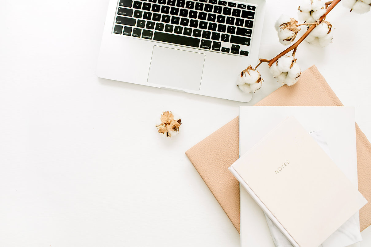 Laptop, notebook, cotton branch on white