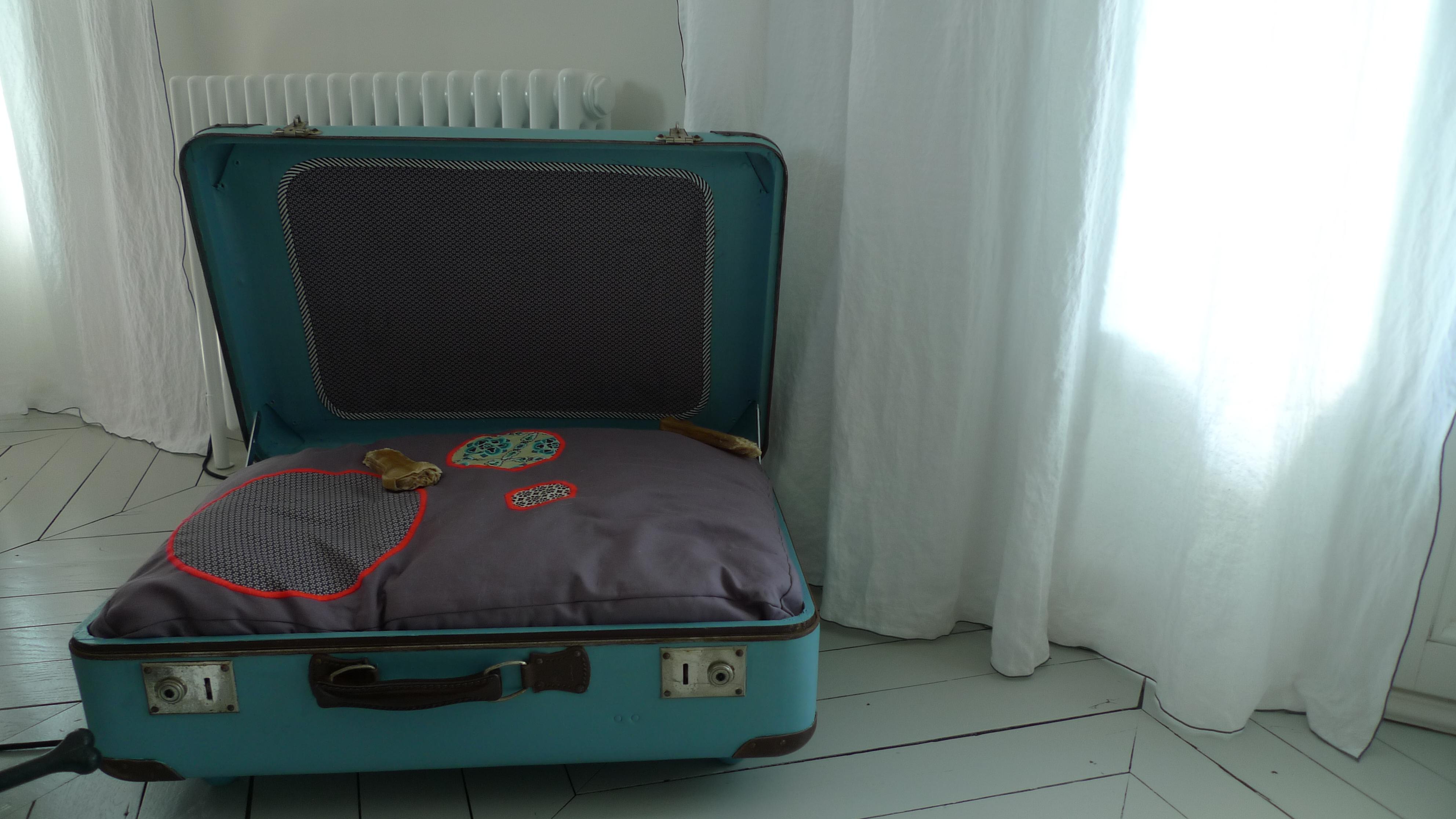 niche, panier, chien, valise
