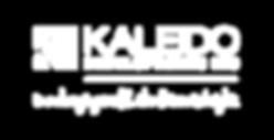 33314_KaleidoDev_Horizontal_Logo_Tagline