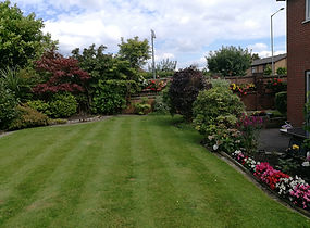 customers garden after tidy up