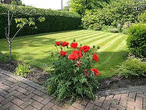 Customers garden requiring maintenance