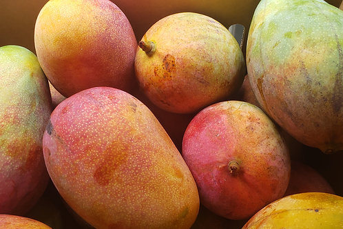 Keith Mangoes (XL)