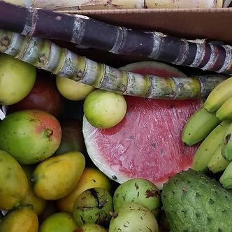 fruit box 3.jpg