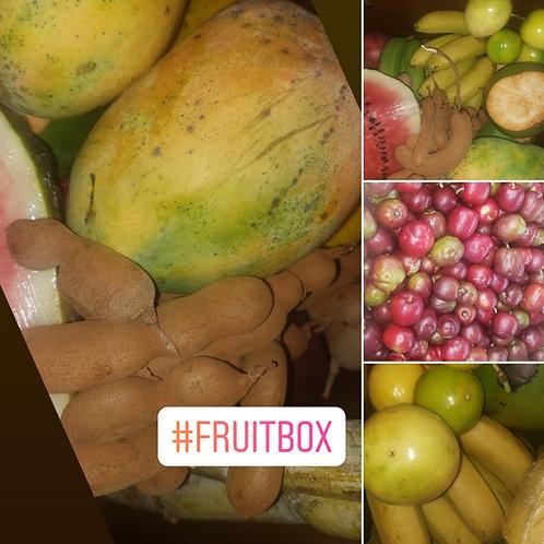Mini Summer Fruit Bundle