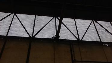 Bird Netting Manchester