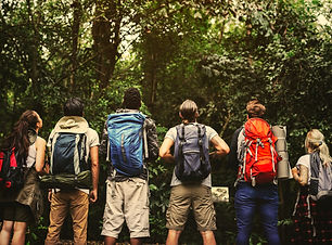 Friends hiking in a forest.jpg