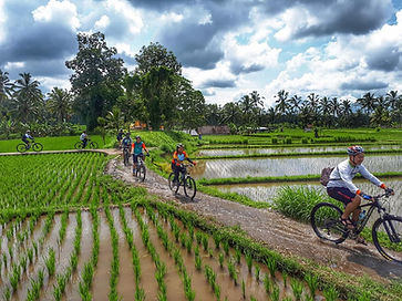 Indonesia Mountain Bike Tour